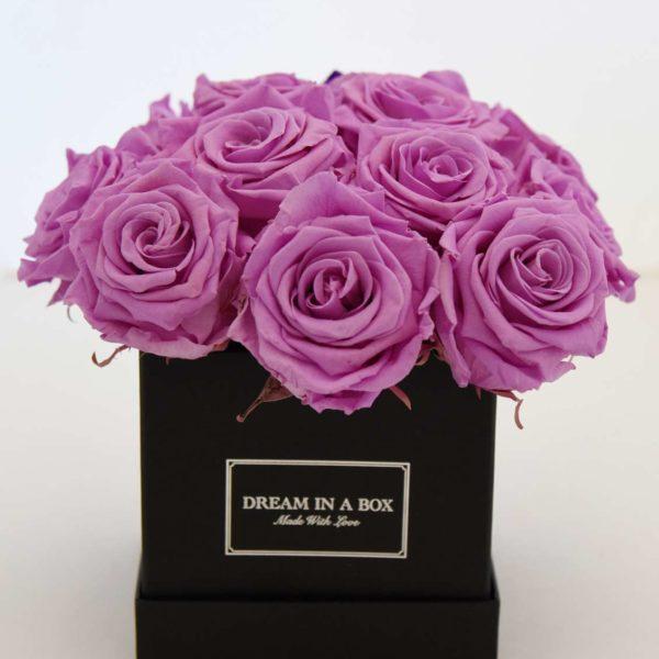 Mini Square Dream - scatola nera con rose lilla stabilizzate