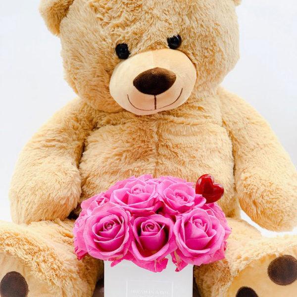 mini square dream special-san-aalentino-Con-orso ted e pin a forma di cuore