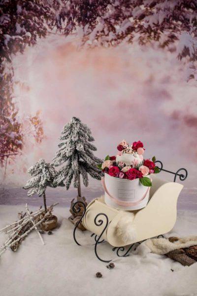 Dream-in-a-Box-Rose-in-Scatola-Natale-1