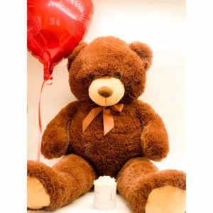 Orso peluche Dreaming Brown Ted